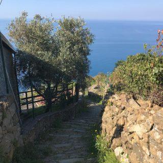 Nel blu dipinto di blu 💙Escursione dal Monte Parodi a Monesteroli passando fa Fossola